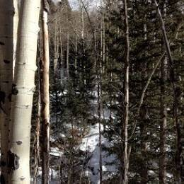 Snowshoeing in Santa Fe's National Forest